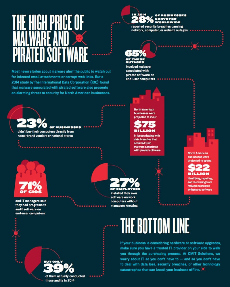 Software piracy infographic